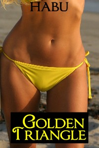 Yes Golden triangle erotic reviews that